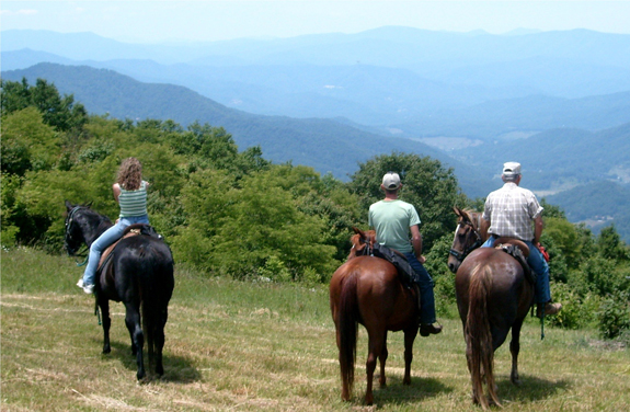 asheville trail rides