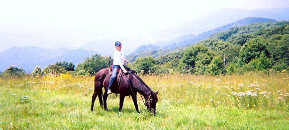 asheville nc horseback riding trails
