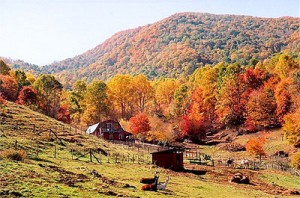 asheville mountain cabins